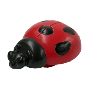 Colourful Lady bird Cabinet Knob