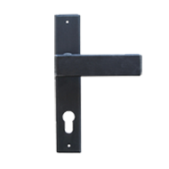 Door Lever Handle with Backpl