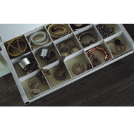 Accessory Organizer Pullout with Silent