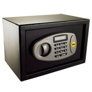 Standard Digital Safe