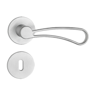 Door Lever Handle on Rose - P