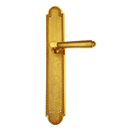 Door Lever Handle on Plate - Gold PVD F