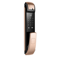 Digital Door Lock with Fingerprint + Password + Card - Golden Finish
