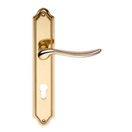 Door handle on plate - Polished Brass F