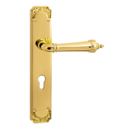 ERICE Door Handle on Plate - Old Gold F